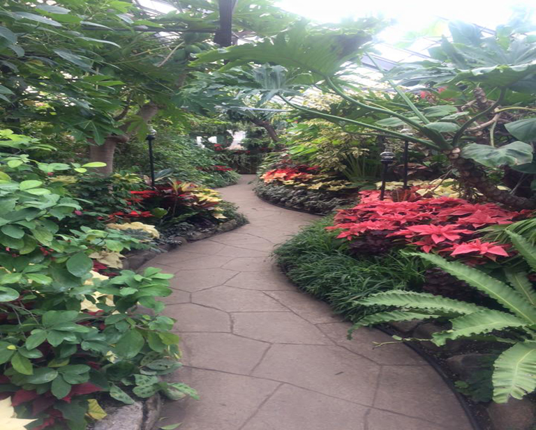 Allan Gardens Conservatory History
